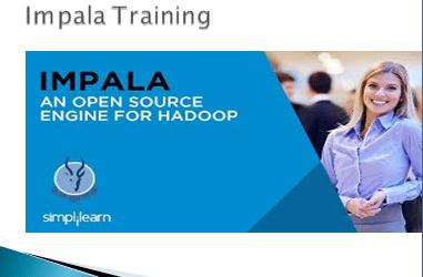 Impala Training