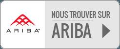 Consulter le profil de Kaizen soft skills sur Ariba Discovery