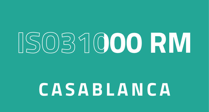 iso31000 rm