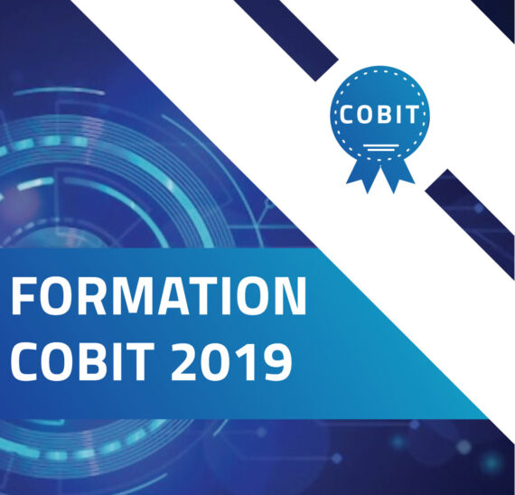 avance formation cobit
